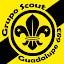 Grupo Scout Guadalupe
