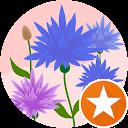 Marlène th