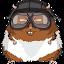Hamster Bennett (Owner)