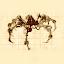 Mechanized Arachnid (Owner)