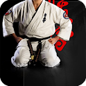 Karate Live Wallpaper icon