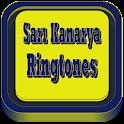 Sari Kanarya Marches icon