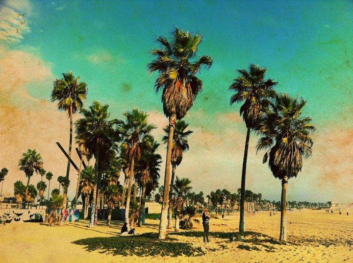 Photo: Venice Beach California