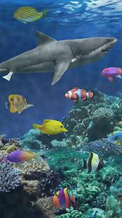 shark wallpaper remover