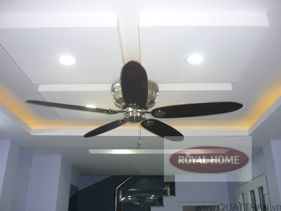 Tìm mua địa chỉ bán quạt trần đèn uy tín tại Hà Nội