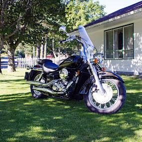 750 Shadow by Geoff Gosse - Transportation Motorcycles
