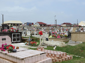 Photo: Cayenne - cemetery