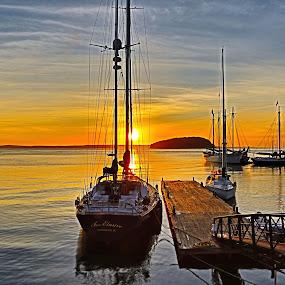 Sunrise over Bar Harbor #2 by Cal Brown - Transportation Boats ( maine, waterscape, bar harbor, sunrise, sailboat, landscape,  )
