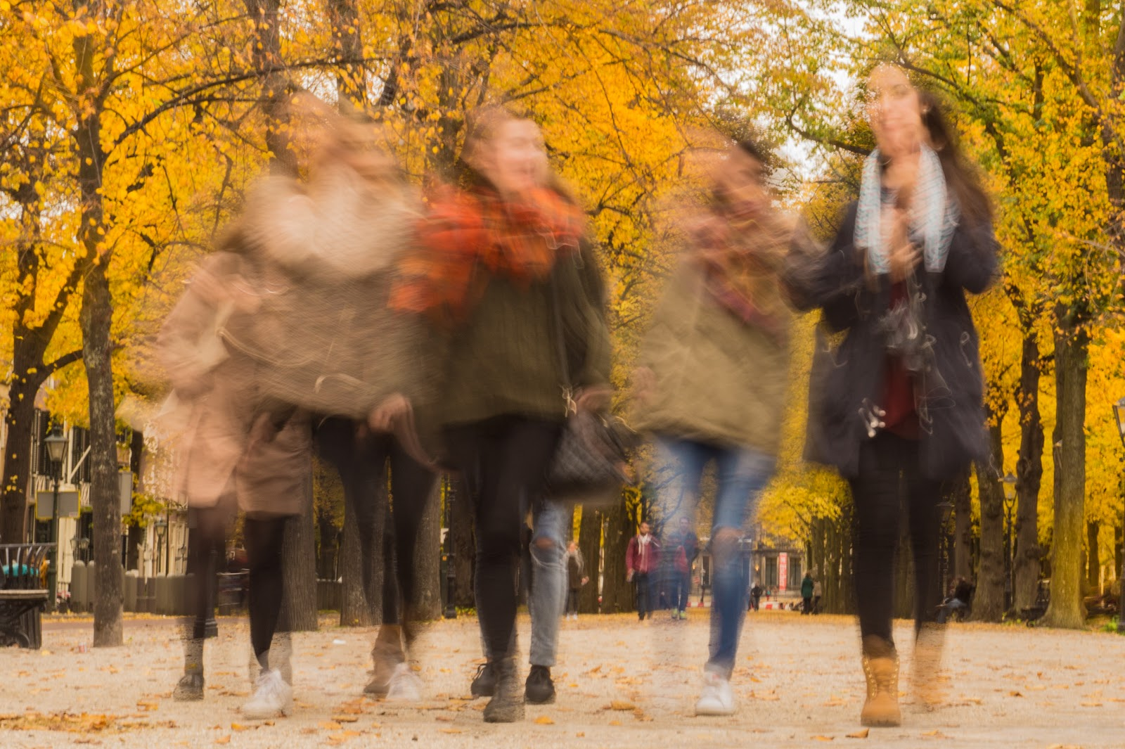 group of women in a park blurred