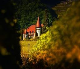 Photo: Château Maison Blanche (Yvorne)