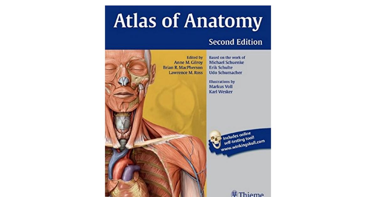 1604067454-Atlas-Anatomy-Anne-M-Gilroy.pdf - Google Drive