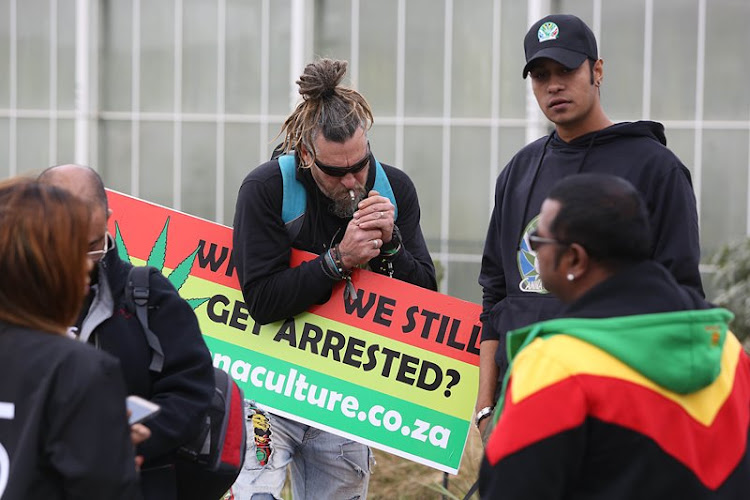 Protesters demand equal dagga growing opportunity as they march on Durban hemp plantation.
