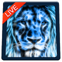 Lion Magic Touch Live wallpaper 2018 icon