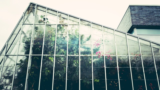 greenhouse-1246536_640.jpg