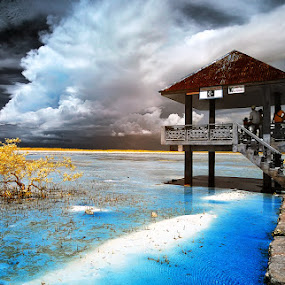 Olango in Infrared by Boyet Lizardo - Landscapes Waterscapes ( ir, infrared photography )