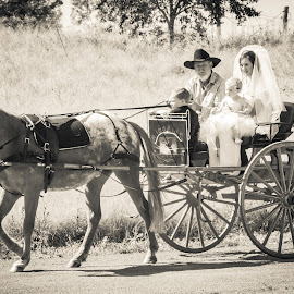The Arrival by Sarah Sullivan - Wedding Getting Ready ( wedding, horse and cart, marriage, bride, sarah sullivan photography )