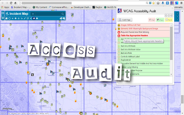 WCAG Accessibility Audit Developer UI