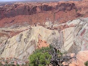 Photo: Canyonlands