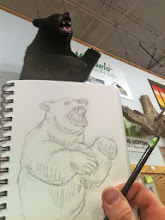 Photo: RRRAWWRbear: reference sketch