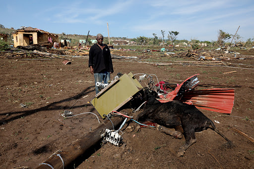Beloved pets and livestock swept up in deadly storm