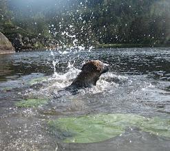 Photo: Aylas første svømmetur, 4 mnd