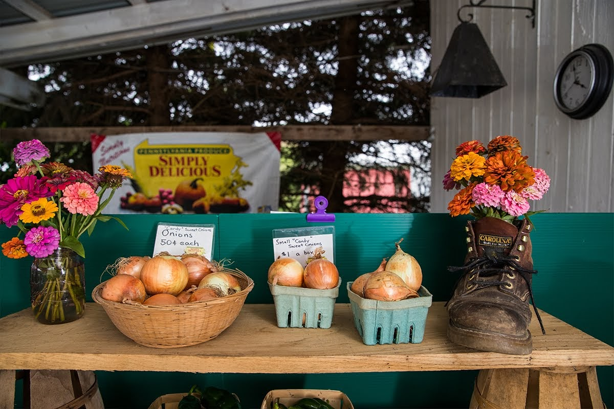Pleasing Farm Stores Forever 5 Local Spots Worth The Pit Stop Download Free Architecture Designs Pushbritishbridgeorg