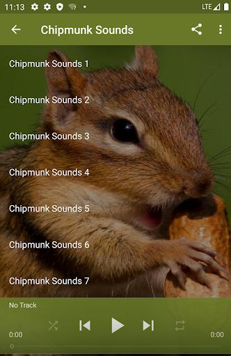 Dramatic Chipmunk Wikipedia
