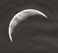 Photo: Vénus le 26 février 2009 à 18H26TU,  T406 à 350X en bino et filtre W47.