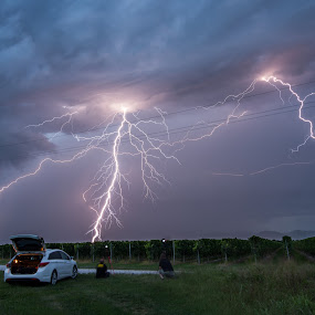 Lightning show by Matic Cankar - Landscapes Weather ( lightning, storm, field, wineyard, light, dusk, thunder, clouds, chase, landscape, italy )