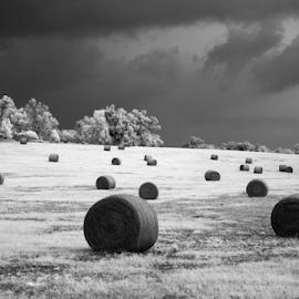 ir bails by David Ubach - Black & White Landscapes ( himm, hay, bails, storm, infrared, clouds, landscape )