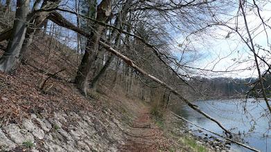 Photo: normalerweise würde man die straße dort oben gar nicht sehen, aber im heurigen winter ist massiv abgeholzt worden