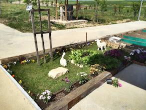 Photo: Hobi Bahçem'den bir görünüm. #1