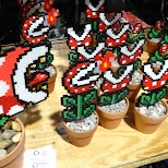 awesome plants at Anime North 2014 in Mississauga, Ontario, Canada