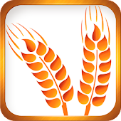 Celiac Disease Wheat & Gluten