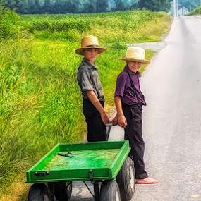 Amish Boys by Sandy Considine - Babies & Children Child Portraits ( young boys, straw hats, amish )