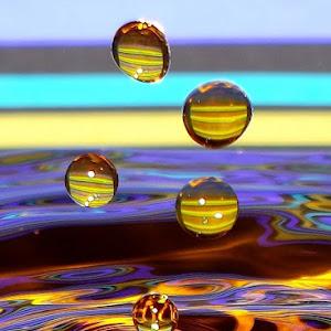 drops May 20a 20121409aa1.jpg