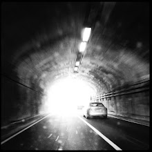 Photo: #251 Tunnel vision