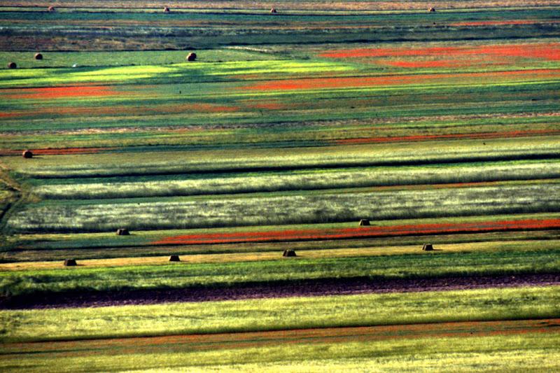 tavolozza di colori di Fiorenza Aldo Photo