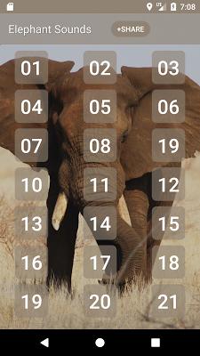 Elephant Sounds - screenshot