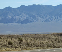 Photo: Scenes along the highway, Nevada.   Note Joshua Trees (a tall branching yucca)
