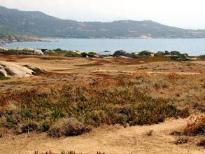 Photo: #003-Randonnée en Balagne sur le littoral Corse