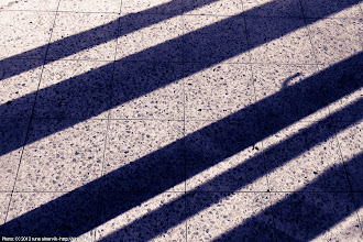 Photo: Light and shadow.