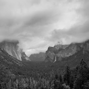 Yosimite by Anthony Ashcroft - Landscapes Travel ( canon, honeymoon, tunnel view, black and white, yosemite, el capitan, view, 50d, usa, tunnel )