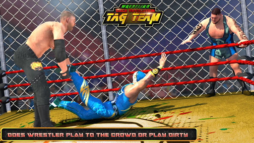 WRESTLING CAGE REVOLUTION:TAG TEAM WRESTLING GAMES