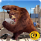 Angry Rogue Bear 1.0 Apk