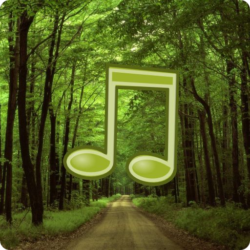 Forest Sounds Nature To Sleep - Apps on Google Play