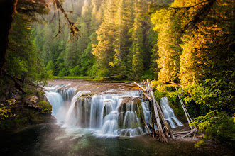 Photo: Morning Light  From my visit to The Gifford Pinchot National Forest last weekend comes this shot of Lower Lewis River Falls. A must see for anyone visiting the area. This was taken from just in front of one of the viewing platforms. It's a bit of a drive from Portland but one I will make many more times in the future. Besides this falls there is a plethora of beautiful sites to see in the area.  Prints available:http://bit.ly/1q0NaBp  #wateralls  #washington  #landscapephotography