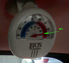 48°C - Rear