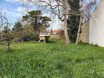 terrain à Bouin (85)