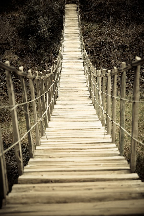 Suspended wood bridge by Renato Alexandre - Buildings & Architecture Bridges & Suspended Structures ( adventure, wooden, nature, wood, trekking, outdoor, path, bridge, indiana jones, suspended )
